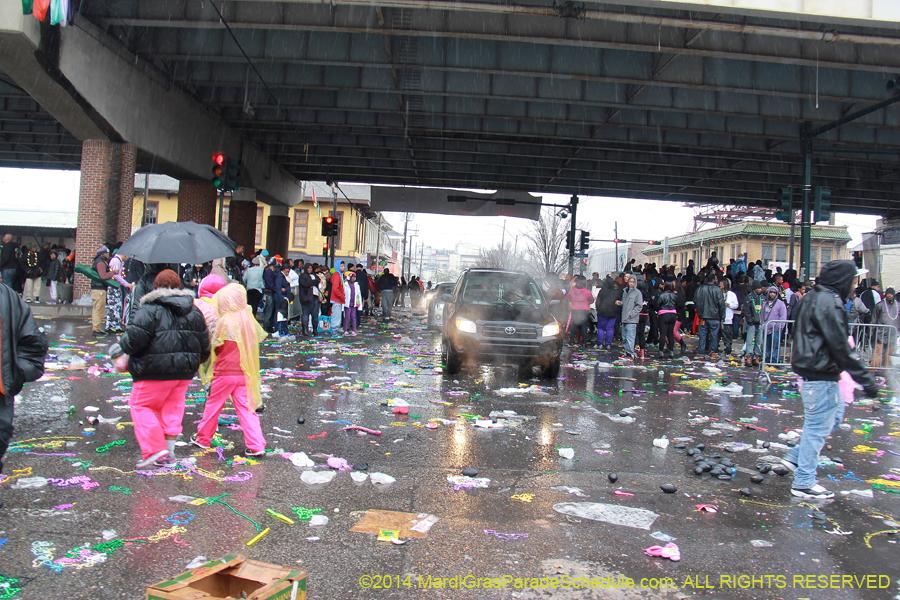 2015 New Orleans Mardi Gra Parades