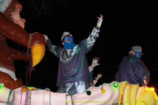Rider in the Krewe of Bacchus - photo by Jules Richard