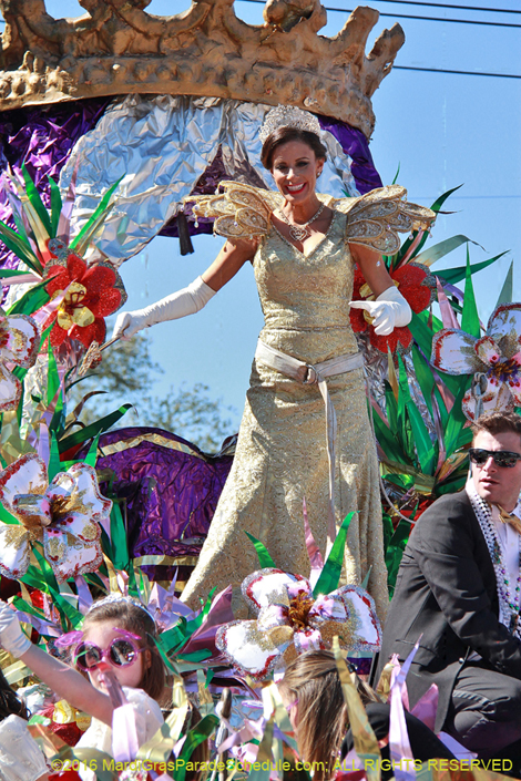 Krewe of Mid City 2016 �2016 Jules F. Richard IV; ALL RIGHTS RESERVED