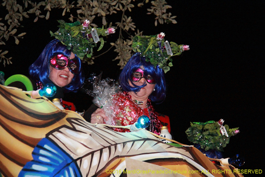 A little excitement during Mardi Gras - photo by Jules Richard