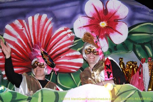 Zest and excitement during the Krewe of Nyx parade - photo by Jules Richard